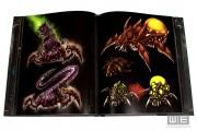 StarCraft2_C2_WE_36