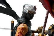 Ninja Gaiden 3 Collectors Edition